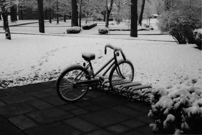 Winter Misc