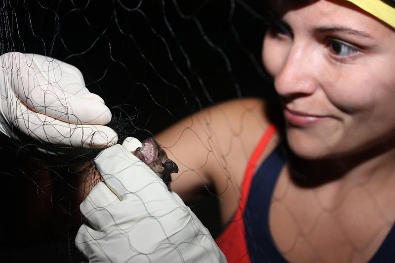 2011 08-Bat Blitz Jessica Welch removes bat 2-GP.jpg