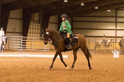 Horse 642