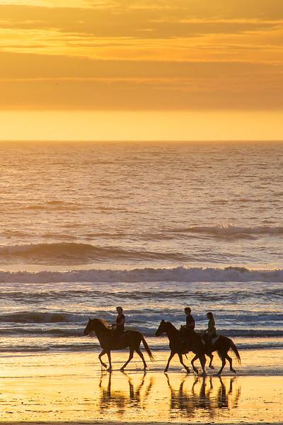 Horses_on_Beach_20110308(12x18).jpg