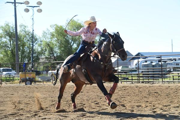 Pandemic Slack Rodeo July 11