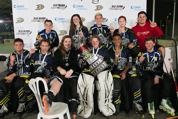 2016 Give Blood Play Hockey Champions