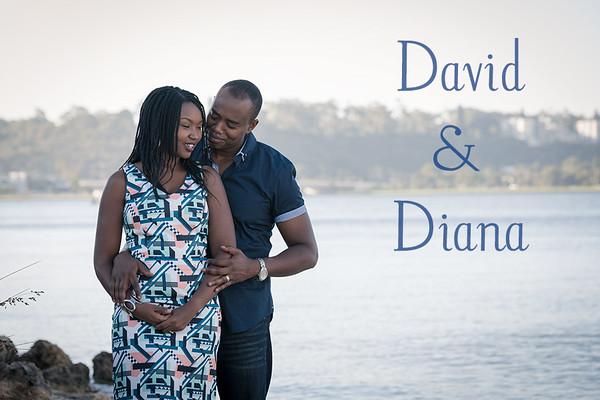 Diana & David