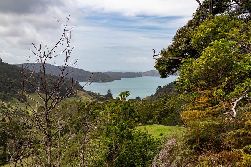 Looking at Huia Bay (opposite of Whatipu Beach)