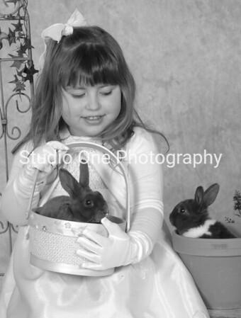 bunnies 032
