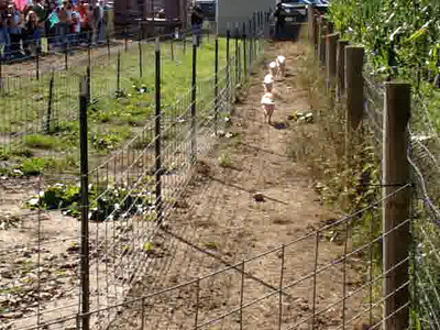 Finks Farm 10/08/11 Videos