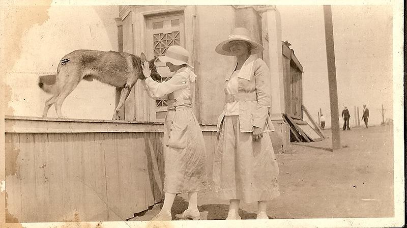 girls and German Shepherd.jpg