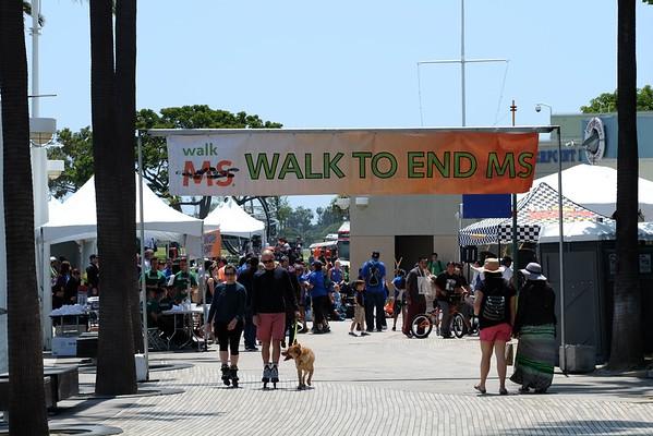 MS Walk 2016
