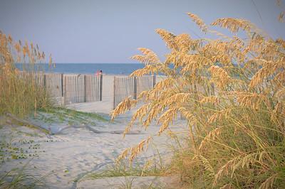 Hilton Head Island Palmetto Dunes Shoot
