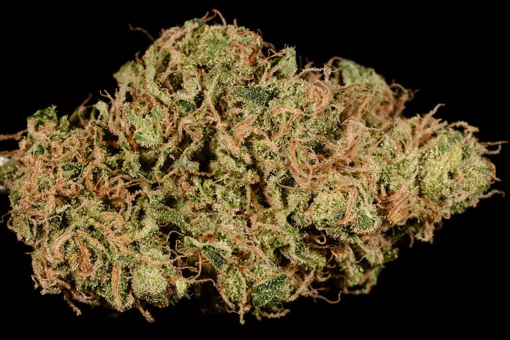 . No. 23: Golden Goat (Ry Prichard, The Cannabist)