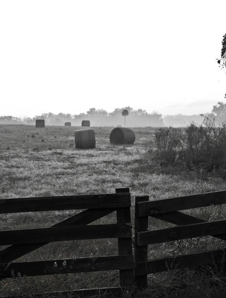 hay gate.jpg
