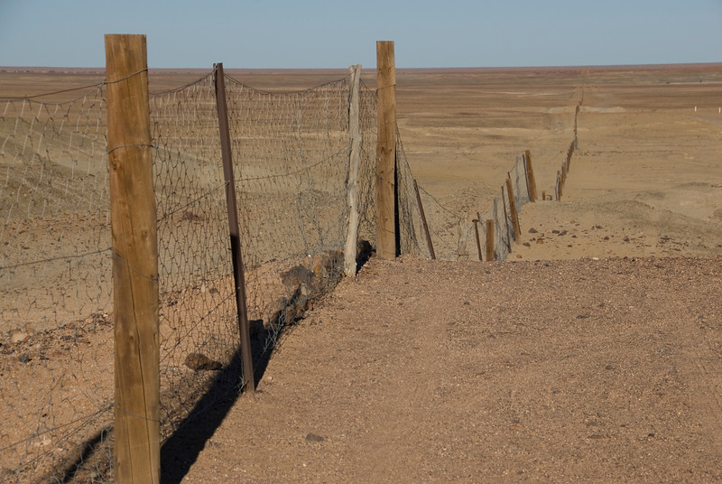 Dog Fence 3 - Coober Pedy, South Australia
