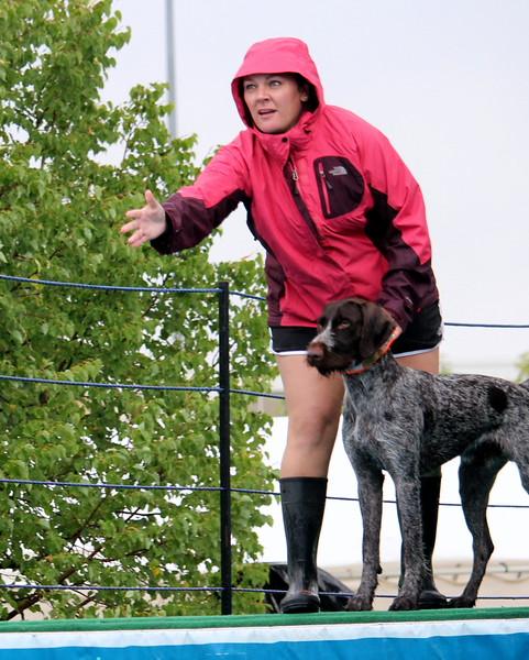 2015.8.7 Winnebago County Fair Dock Dogs (2).JPG