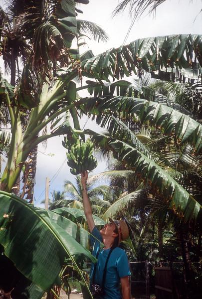 1989 Roatan Honduras Mission Trip-0007.jpg