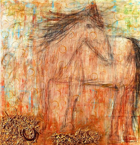 Equine Series