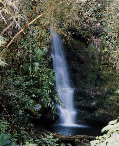 107- 20080409- Hawaii 15- Enroute to Hilo- Off-road Waterfalls DSC_2611.jpg
