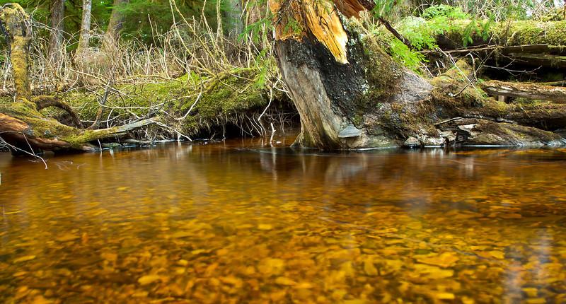 Kadake Side Creek 2.jpg