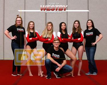 Westby gymnastics GYM1819
