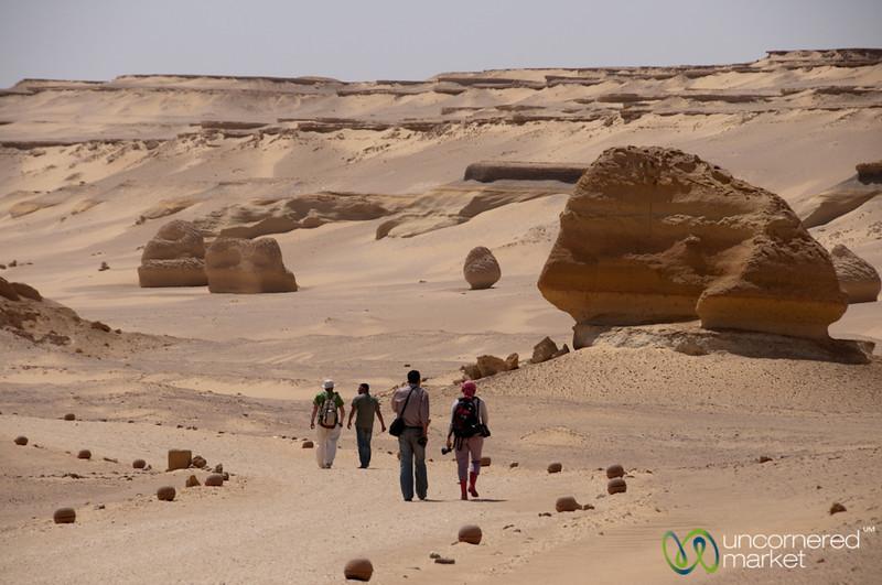 Desert Walk, Valley of the Whales - Fayoum, Egypt