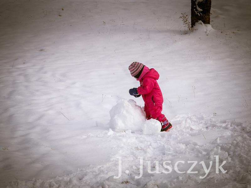 Jusczyk2015-1287.jpg