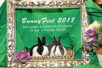 2018 BunnyFest