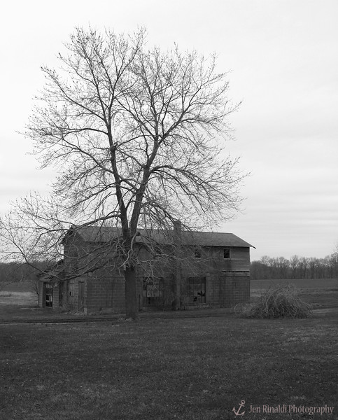 Barns, Farms, & Abandoned Places (Rural Feel)