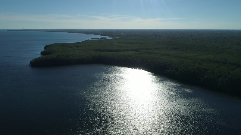 Aerial Nature preserve green on the bay