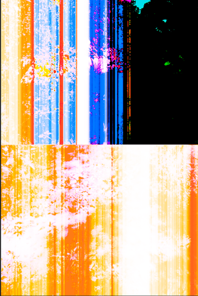 Glitchscapes