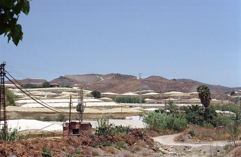 Intensive Vegetable Production in Spain, near Almeria