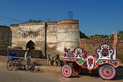 IMAGES OF INDIA 2010-BHARATPUR