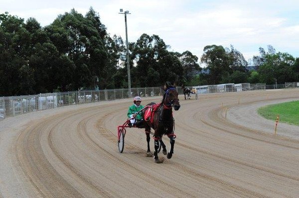 Penrith Paceway 2nd January, 2014