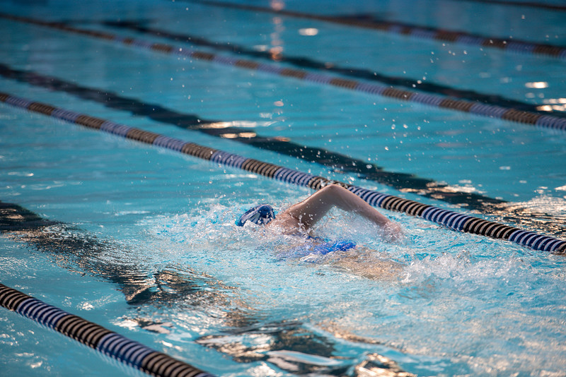 lcs_swimming_kevkramerphoto-817.jpg