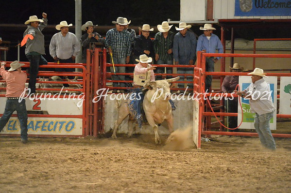 Chatto Bull Riding Challange