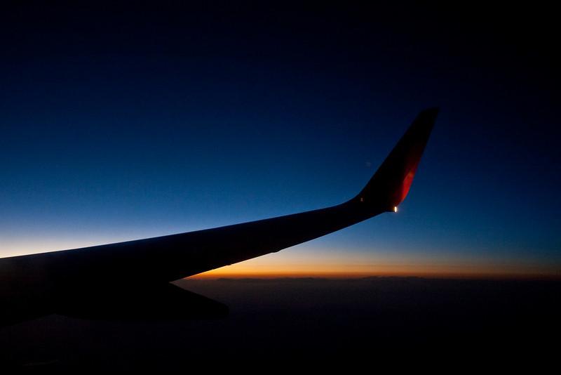 8796 Wing at Dusk.jpg