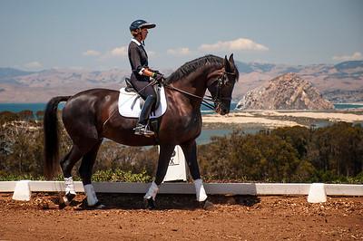 Sea Horse Ranch demonstration
