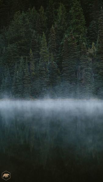 Todd-Lake-Trees.jpg