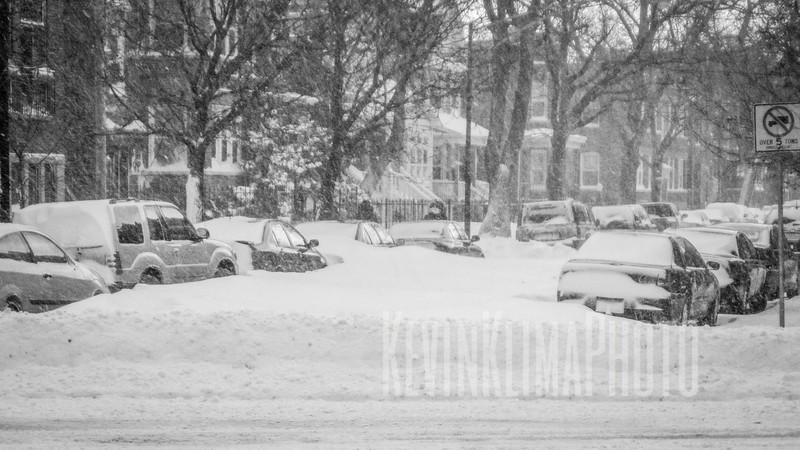 blizzardwalk08.jpg
