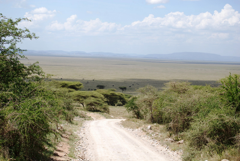 Serengeti (53).JPG