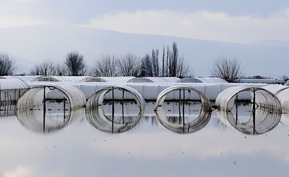 Description of . A view shows a flooded garden in the village of Murtino, 180 km east of capital Skopje February 27, 2013. One man drowned and several hundred homes in Macedonia were flooded on Tuesday as two days of heavy rain drenched farmland and caused power outages in the Balkan country, authorities said. REUTERS/Ognen Teofilovski