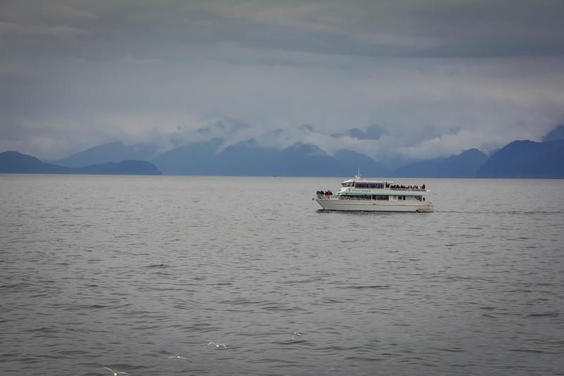 Kenai-Fjords-177.jpg