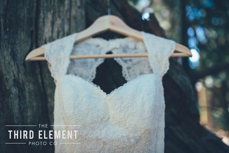 Third Element Photo Co Brittney + Errol Yosemite Wedding Hetch Hetchy San Francisco_0004.jpg