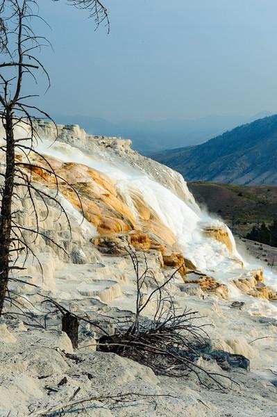 20130816-18 Yellowstone 204.jpg