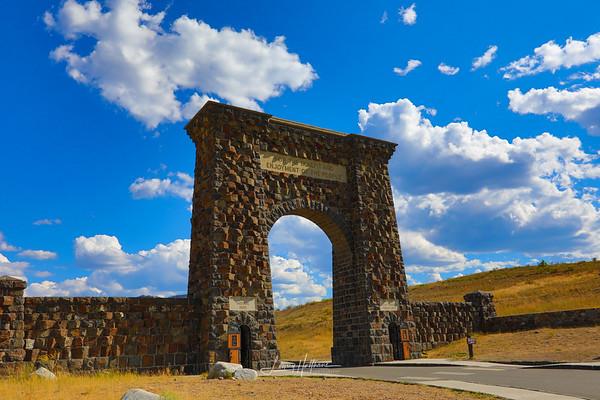 Yellowstone 2019-best of