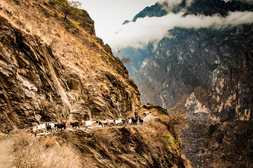 The trail we trekked in Tiger Leaping Gorge in Yunnan, China