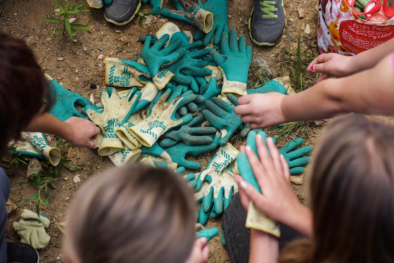 2015 06-Bee Log-Kids picking gloves-Peeples.jpg