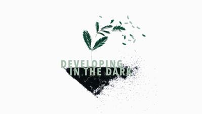 Developing in the Dark