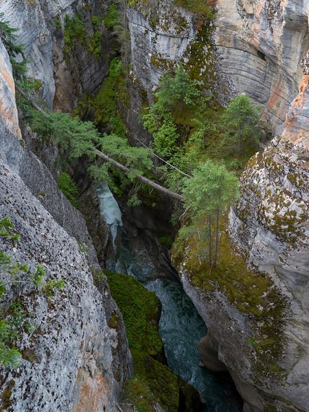 High angle view of canyon, Maligne Canyon, Jasper National Park, Jasper, Alberta, Canada