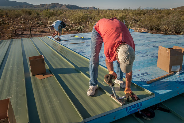 Roof: Decking and Standing Seam Steel Panels