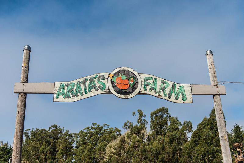 Our day of fun at Aratas Farm
