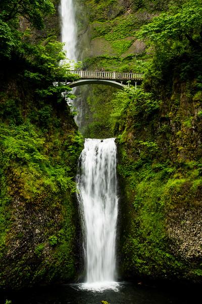 Multnomah Falls-12.jpg